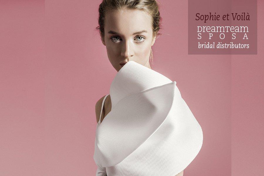 Sophie et voila 2020- Dream Team